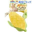 ドギーマン ウサギのおもちゃ おやさいパラダイス とうもろこし(1個)【ミニアニマン】
