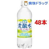 伊賀の天然水 炭酸水 グレープフルーツ(500mL*48本セット)