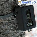 サンコー 自動録画監視カメラ「MPSC-12」用セキュリティーボ...