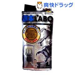 フジコン 標本ラボ★税込1980円以上で送料無料★フジコン 標本ラボ(1コ入)