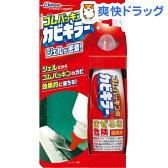 ゴムパッキン用カビキラー(100g)【カビキラー】[液体洗剤 カビ掃除]
