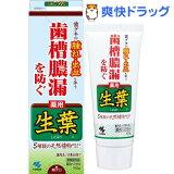 小林製薬 薬用歯みがき 生葉(100g)[歯磨き粉]