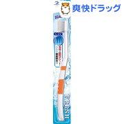 フレッシュ ハブラシ 歯ブラシ