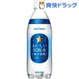 サッポロ おいしい炭酸水(500mL*24本入)