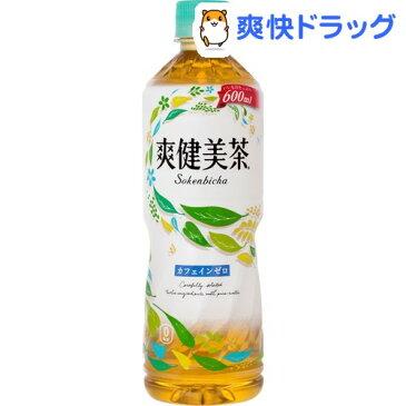 爽健美茶(600mL*24本入)【爽健美茶】【送料無料】