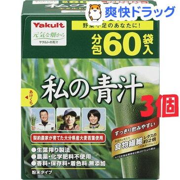 ヤクルト 元気な畑 私の青汁(4g*60袋入*3コセット)【元気な畑】【送料無料】