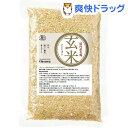 オーサワ 国内産有機玄米 (コシヒカリ)(300g)【オーサワ】 1