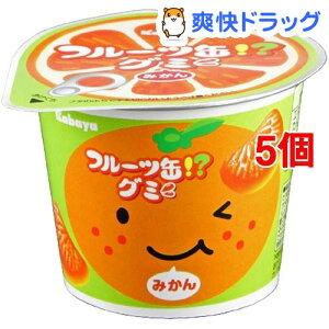 カバヤ フルーツ缶グミ(50g*5個セット)
