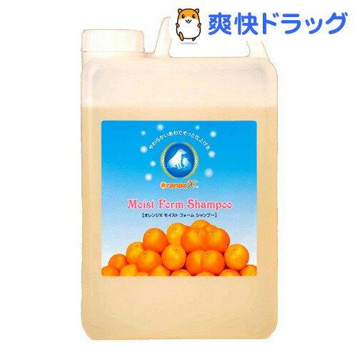 オレンジエックス モイストフォームシャンプー(2L)【オレンジエックス(オレンジX)】[犬 シャンプー]【送料無料】