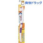 フレッシュ 歯ブラシ
