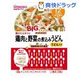 和光堂 BIGサイズのグーグーキッチン 鶏肉と野菜の煮込みうどん[12ヶ月頃〜](120g)