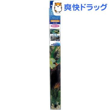 3Dスクリーン 90cm水槽用 リバーシブル90A(1コ入)【コトブキ工芸】