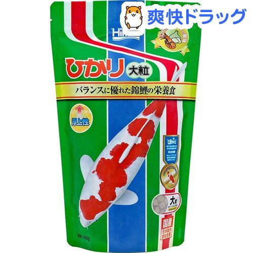 ひかり 大粒(400g)【ひかり】