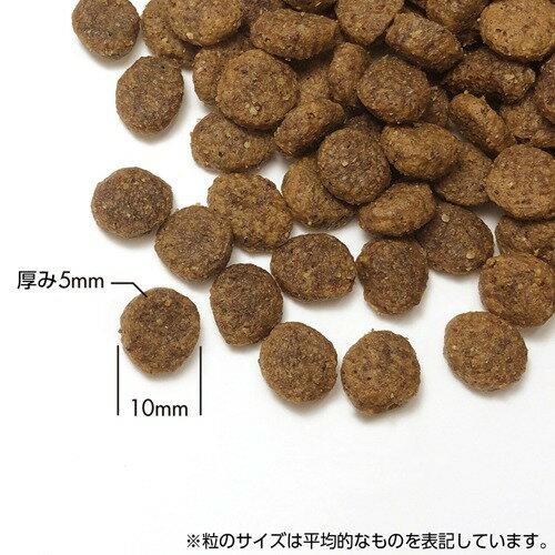 プリンシプル グレインフリー サーモン&SW 乳酸菌配合(800g)【プリンシプル】
