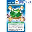 ジェノタイピスト 葉酸代謝遺伝子分析キット 口腔粘膜用(1コ入)【送料無料】