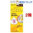 シエロ ムースカラー 4 ライトブラウン(2箱セット)【シエロ(CIELO)】[白髪染め]