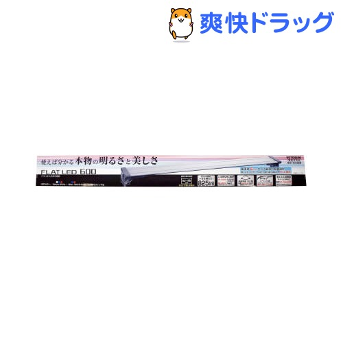 フラットLED600(1コ入)