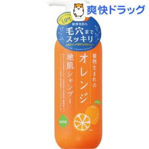 オレンジ シャンプー