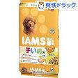 アイムス 12か月までの子いぬ用 チキン 小粒(5kg)【アイムス】[【iamsd31609】]【送料無料】