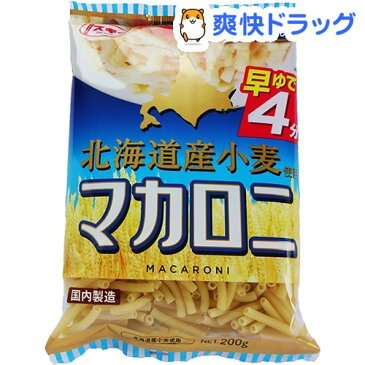 スキー 早ゆで 北海道産小麦使用 マカロニ(200g)