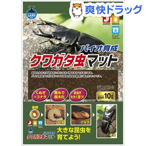 インセクトランド バイオ育成 クワガタ虫マット(10L)【インセクトランド】