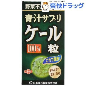 山本漢方 ケール粒100%(280粒)【山本漢方 青汁】