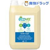 エコベール ランドリーリキッド リフィル 大容量パック 洗たく用液体洗剤(5L)