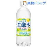 伊賀の天然水 炭酸水 グレープフルーツ(500mL*24本入)