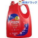 ベトナムダウニー パッション(3.8L)【ダウニー(Downy)】