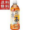 サンガリア あなたの香ばし麦茶(500mL*24本入)【あなたのお茶】[ペットボトル]