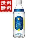 サッポロ おいしい炭酸水 レモン(500mL*24本入)[炭...