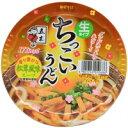 【ケース販売】五木 ちっこいうどん 松茸風味 110g×12個