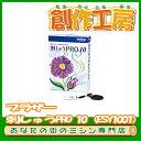 【最新版】ブラザー 刺しゅうPRO 10(ESY1001)【刺繍】【ミシンオプション】【RCP】【楽天カード分割】