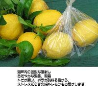 無農薬レモン2.5kgセット