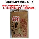 ポイント消化 「こしいぶき」 送料無料(送料込み) 巣ごもり需要品  美味しい米小袋 新潟米 白米750 g(5合)(送料込価格) 銘柄「こしいぶき」 美味しい新潟米 プチギフト米袋