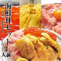 海鮮丼、ウニ、ネギトロ、イクラ