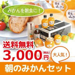 【送料無料】朝のみかんセット(N)商品画像