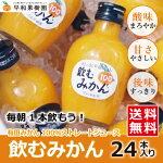 【みかんジュース】飲むみかん200ml×24本入り