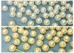 〇〇樹脂ビーズ 樹脂パール 両穴 直径6mm 12g入り 約115個 パール白 クリーム