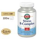 ストレスBコンプレックス(ビタミンB群+ビタミンC) 100粒