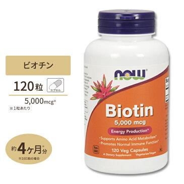 ビオチン 5000mcg120粒《120日分》NOW Foods(ナウフーズ) カプセル ビタミン ビタミンB群 スキンケア ヘアケア 肌 髪 栄養補助 サプリメント サプリ