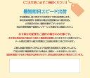 ネームエル ツイン オーダー 印面付き 即日発送 / シャチハタ 2