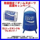 【15日限定P最大10倍】ポカリスエットポカリスエット粉末セット(10L用×10袋(1ケース)) 熱中症対策 3415SET