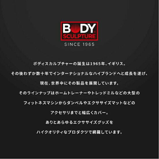 ボディスカルプチャーBODYSCULPTUREバランスボール【65cm】アンチバースト空気入れ付きジムボール
