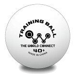 ザ・ワールドコネクト プラスチックトレーニングボール 100球入 ワールド・トレーニングボール 40+ DV001