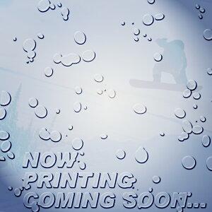 【特典あり】エラン スノーボード 板 19-20 ELAN HEATHER BROWN NORTH SHORE WAVE 154 ヘザーブラウン ノースショアウェーブ 日本正規品 予約