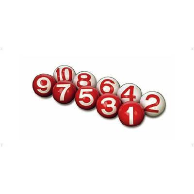 HATACHI(ハタチ) ゲートボール 2面ボール(10個組) GB301B