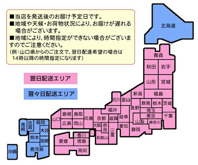 ★アリーナメンズインナーショーツARN-91