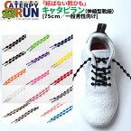 TWINS[ツインズ]結ばない靴ひも キャタピラン[CATERPYRUN](伸縮型靴紐)【75cm/一般男性向けサイズ】[メール便OK]