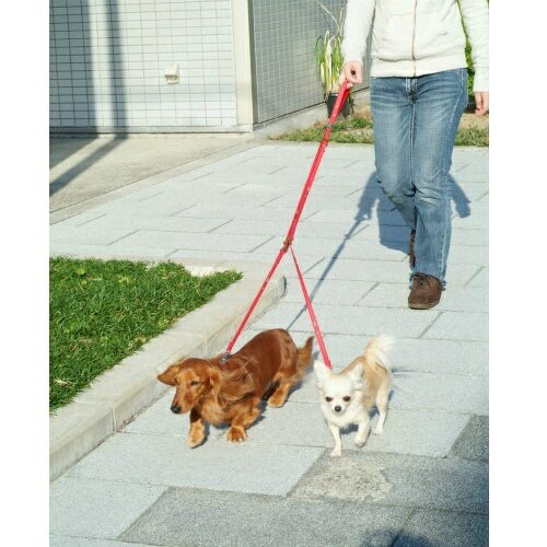 ペティオ 3WAY 2頭引き 引きひも クローバードッグ ピンク・ブルー・オレンジ 小型犬用 リード